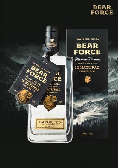 Слайдер Bear Force плакат